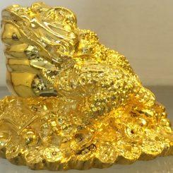 cóc tài lộc mạ vàng